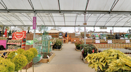 A view of the inside of our garden centre plant area at Sapcote Garden Centre